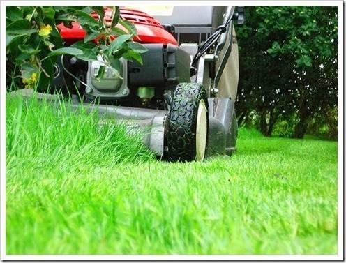 Садовая техника: неоценимая помощь и экономия времени