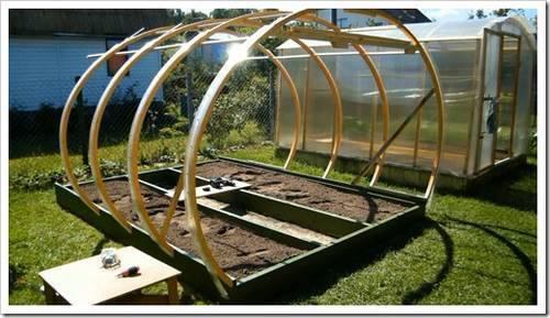 Тепличный комплекс: снабжение свежайшими овощами в любое время года