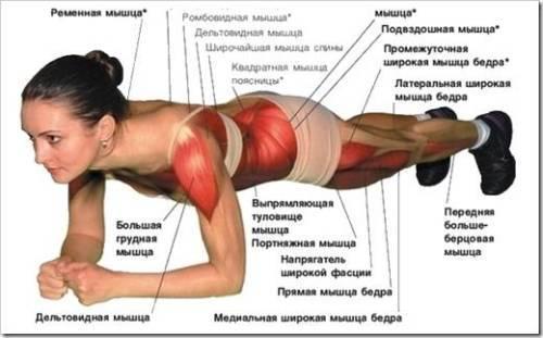Планка – новая мода на новое упражнение