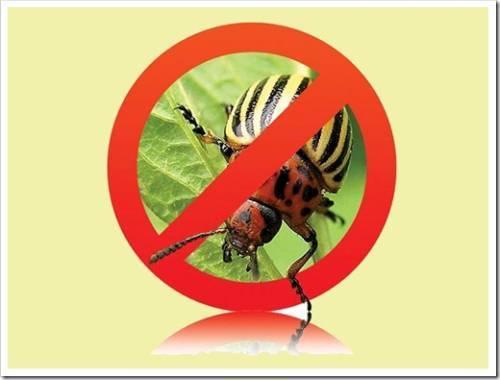 Классификация средств для борьбы с насекомыми-вредителями