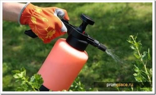 Пиретроиды – лучшее, что сегодня может предложить химическая промышленность