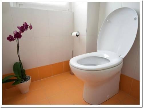 Важное удобство в любой квартире - унитаз