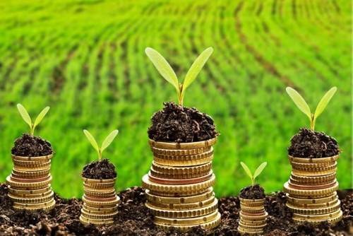 Как взять кредит на развитие сельского хозяйства